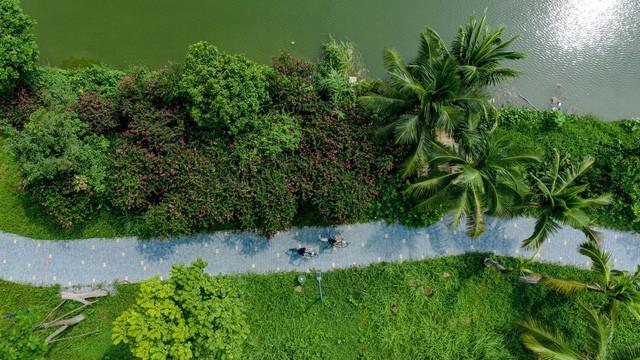 Bên trong đại công viên sinh thái lớn bậc nhất phía Đông Hà Nội có gì? - Ảnh 8.