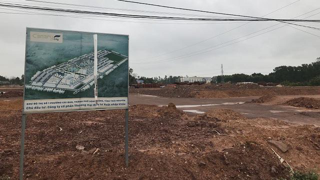 Dự án Canary Thái Nguyên bán lúa non khi chưa có phép - Ảnh 1.