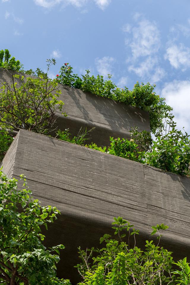 Ngôi nhà 49m2, 3 thế hệ cùng chung sống tại Hà Nội được giới thiệu trên báo Mỹ - Ảnh 10.
