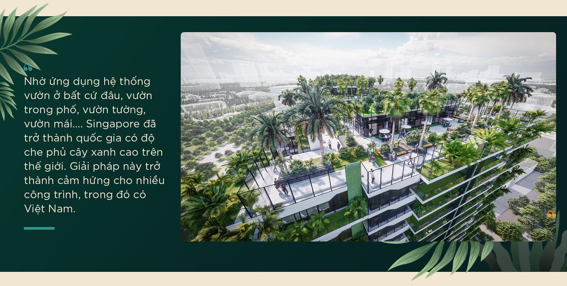 An cư nơi phố: Hơi thở resort xanh mướt và hơn thế nữa… - Ảnh 5.
